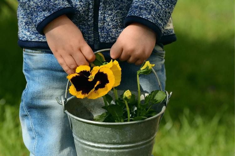 Momento giardinaggio: alla scoperta della natura con i bambini
